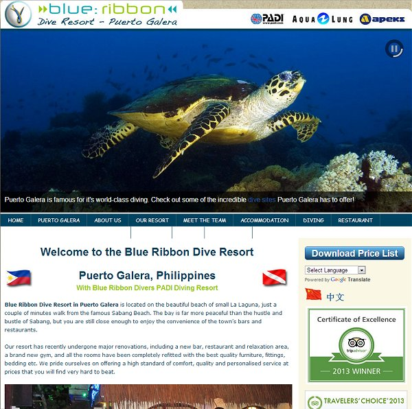 Blue Ribbon Dive Resort.jpg