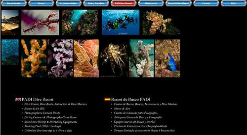 Buceo Anilao Beach Dive Resort.jpg