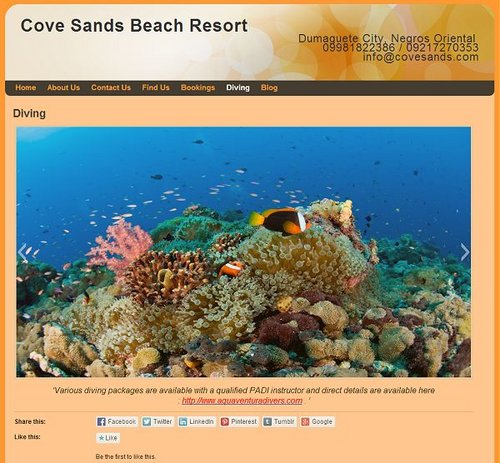Cove Sands Beach Resort.jpg